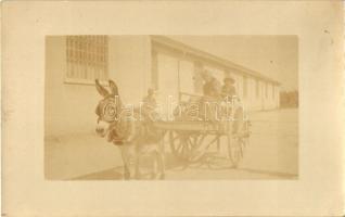 1918 Verona, donkey cart, folklore, photo