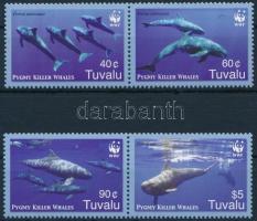 WWF Pygmy killer whales set in pairs, WWF: Törpe kardszárnyú delfinek sor párokban
