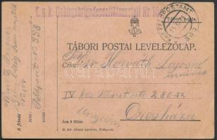 1916 Tábori posta levelezőlap K.u.k. Gebirgsbrigadesanitätsanstalt Nr. 104 + FP 338