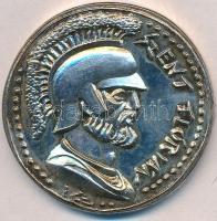 Ifj. Szlávits László (1959-) 1997. Szent Flórián / Budapest Fővárosi Tűzoltóság ezüstözött fém emlékérem adományozói tokban (51mm) T:2 patina