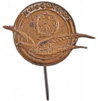 ~1950. MASZOVLET (Magyar-Szovjet Polgári Légiforgalmi Részvénytársaság Br kitűző (15x22mm) T:2 javított tű