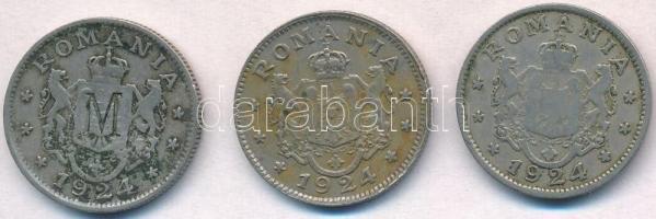 Románia 1924. 1L Cu-Ni (3x) 2db klf, egyiknek előlapján M, hátlapján pedig D beütéssel T:2,2- Romania 1924. 1 Leu Cu-Ni (3x) 2pcs diff, one with M mark on obverse and D mark on reverse C:XF,VF