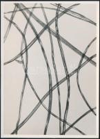 cca 1935 Kinszki Imre (1901-1945): Pamutszerű műrost 220x nagyításban, feliratozott vintage fotóművészeti alkotás a szerző hagyatékában, 16,4x12 cm