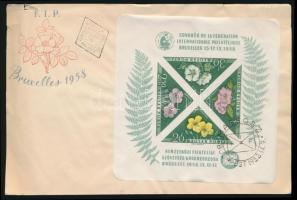 1958 Vágott FIP blokk FDC-n (15.000) / Mi block 28 imperforate on FDC