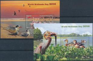 2016 Vízi madarak 4 klf blokk
