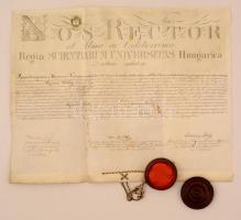 1870 a Budapesti Tudományegyetem orvosi diplomája, latin nyelven, pergamen, aláírásokkal, okmánybélyeggel, fatokos függőpecséttel (a pecsétábra elmosódott)