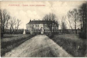 Pidhirsti, Podhorce; zamek strona poludniowa / castle (wet damage)