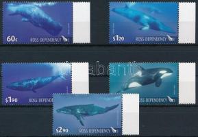 Whales margin set Bálnák ívszéli sor