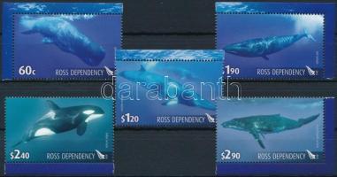 Whales margin set Bálnák sor
