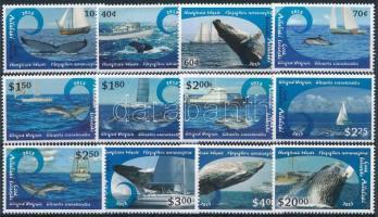 Forgalmi; Bálnák sor Definitive; Whales set