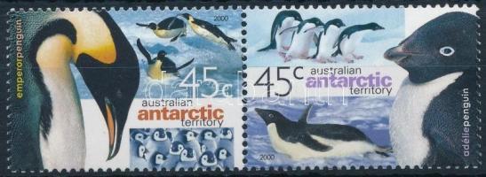Pingvin sor párban Penguin set in pair