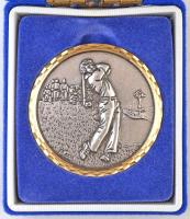 1994 .The Junior Open Scholarship Tournament Candidate Br golf plakett eredeti tokban (60,5mm) T:2 1994. The Junior Open Scholarship Tournament Candidate Br golf plaque in original case (60,5mm) C:XF