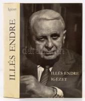 Illés Endre: Igézet. Illés Endre képeskönyve. Budapest, 1982, Magvető Könyvkiadó, 591 p. Kiadói egészvászon, kiadói papírborítóban. A szerző dedikációjával.