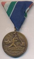 1965. Árvízvédelemért Érem patinázott Br kitüntetés mellszalaggal eredeti tokban T:1- NMK 663