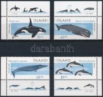 Whales, dolphins corner set Bálnák, delfinek ívsarki sor