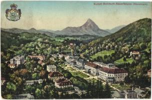 Rogaska Slatina, Rohitsch-Sauerbrunn; general view, coat of arms, Selzer & Rank (EK)