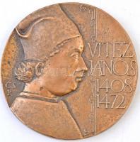 Csíkszentmihályi Róbert (1940-) 1988. Vitéz János 1408-1472 / Alapította az esztergomi Tanítóképző Főiskola az Academia Istropolitana alapítójának emlékére Br emlékplakett (106mm) T:2