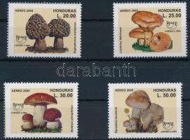 Mushroom set Gomba sor