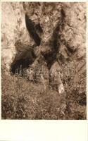 1929 Felsőtárkány, Bükk, Pes-kő-barlang, photo