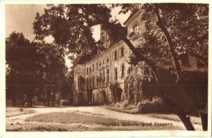 Muraszombat, Muravska Sobota; Szapáry várkastély, Ivan Zver kiadása / castle (EK)