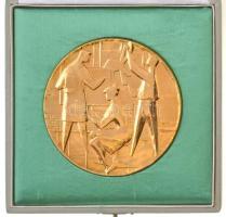 Vincze Dénes (1914-1972) ~1960. Aranyozott bronz szocreál plakett eredeti zöld dísztokban (81mm) T:1