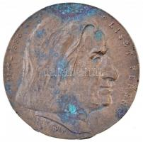 Soltra E. Tamás (1955-) 1986. Liszt Ferenc 1811-1886 / Születésének 175. - Halálának 100. évfordulójára Br plakett (91mm) T:2 patina