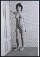 cca 1976 Hazaváró fényképek, 4 db szolidan erotikus akt fotó, korabeli vintage negatívokról készült mai nagyítások 25x18 cm-es fotópapírra / 4 erotic photos, 25x18 cm