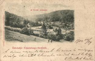 Feketehegyfürdő, Merény, Nálepkovo; Fürdő látképe, Divald műintézetéből / spa (kis szakadás / small tear)