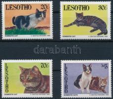 1993 Macskák sor Mi 1066-1069