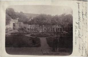 1907 Marosvásárhely, Targu Mures; udvar, kert nyáron / garden in the summer, photo (fa)