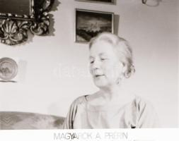 ,,Magyarok a prérin című film állóképei, 16 db negatív, ezekről készültek a mozik előcsarnokában kiállított, új filmek reklámozására szolgáló fényképek, 4x7 cm