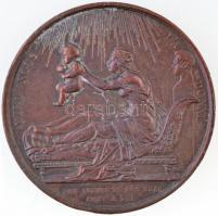 Franciaország 1820. Dieu nous la donné Br emlékérem Bordeaux hercegének a születése alkalmából készítve. Szign.: GAYRARD F. (38mm) T:2 France 1820. Dieu nous la donné Br commemorative medal commemorating the birth of the Duke of Bordeaux. Sign.: GAYRARD F. (38mm) C:XF