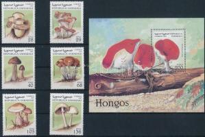 Szahara Köztársaság 1997 Gomba 6 klf bélyeg + 1 blokk