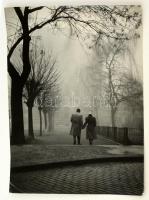cca 1958 Dezső Pál: Ősz, feliratozott vintage fotóművészeti alkotás kiállítási emlékpecsétekkel, 39,5x30 cm