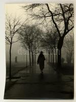 cca 1960 Dezső Pál: Ködben, feliratozott vintage fotóművészeti alkotás, 30x40 cm
