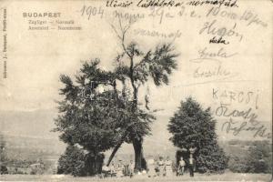 Budapest XII. Zugliget, Normafa, kirándulók, Schwarz J. kiadása (kis szakadás / small tear)
