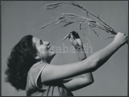1933 Járai Rudolf (1913-1993) fotóriporter pecséttel jelzett, aláírt vintage fotóművészeti alkotása, 18x24 cm