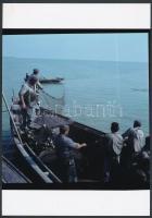 cca 1964 Balatoni halászok és az eredmény, 2 db vintage negatív mai nagyítása Kotnyek Antal (1921-1990) fotóriporter hagyatékából, 25x18 cm