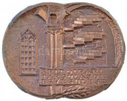 Soltra Elemér (1922-2013) DN Építőipari Társulások Egyesülése / 25 év Br plakett (180x84mm) T:2 oxidációs fo.