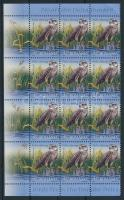 2009 Duna-delta madarak záróérték ívsarki 12-es tömbben Mi 6346