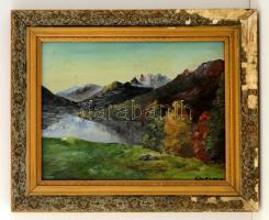 Kaufmann jelzéssel: Hegyvidéki tó, olaj, fa, sérült keretben, 29×39 cm
