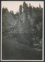 cca 1910-1915 Magas-Tátra, Tarpataki-völgy, Erdélyi Mór felvétele, hátoldalon feliratozva, 11x16 cm / High Tatras, vintage photo, with description on the verso, 11x16 cm