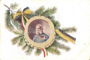 WWI Franz Joseph, Viribus Unitis, Verlag Brüder Kohn (EK)