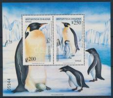 1992 Chilei Antarktisz: Császárpingvinek blokk Mi 23