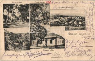 Solymár, Brunner villa, vízesés, utca, patak, látkép (EB)