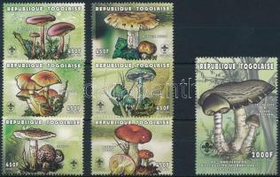 Gomba sor, Mushrooms set