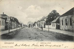 Sárospatak, Rákóczi utca, kiadja Trócsányi B. (EK)