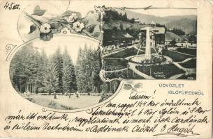 Iglófüred, Spisská Nová Ves Kupele; Üstökös tér, Millenium szálló / square, hotel, floral, Art Nouveau (b)