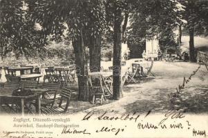 Budapest XII. Zugliget, Disznófő vendéglő, kerthelyiség, kiadja Schwarz J. (EK)