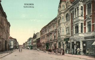 Cesky Tesin, Teschen, Sachsenberg; street, Marcus Grünefeld, B. Dittrich, Schuster shops (EK)
